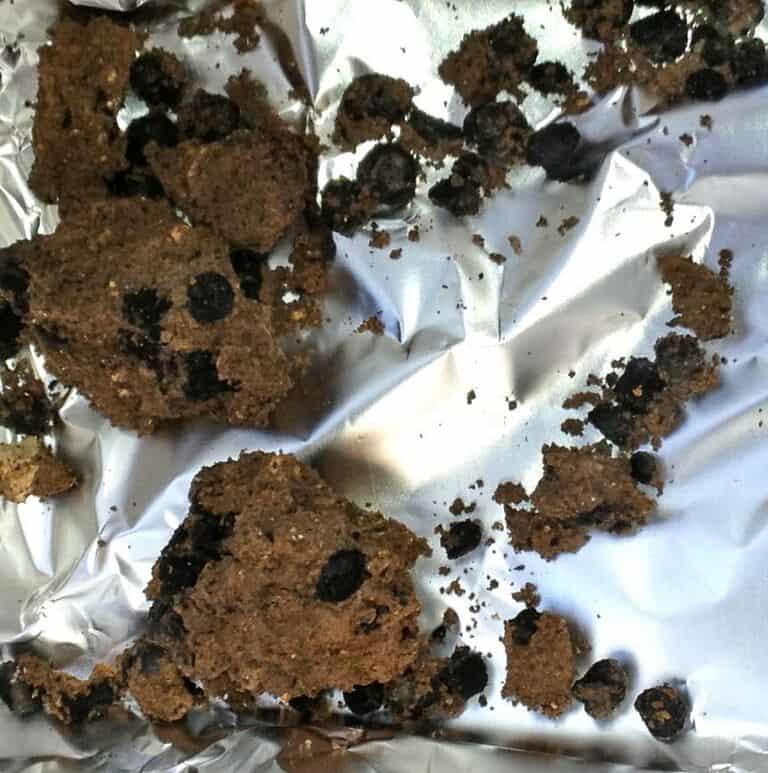 זרעי הפול המבויתים הקדומים ביותר המוכרים בעולם שנמצאו באחיהוד. (צילום: קובי  ורדי, באדיבות רשות העתיקות)