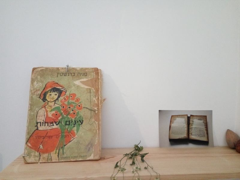 """ספר מאוייר ע""""י צילה בינדר (צילום דני בר)"""