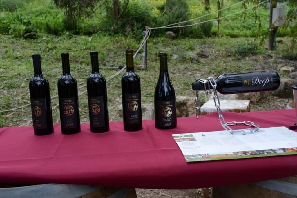 יינות יקב יפתחאל (צילום אורי מלצר)