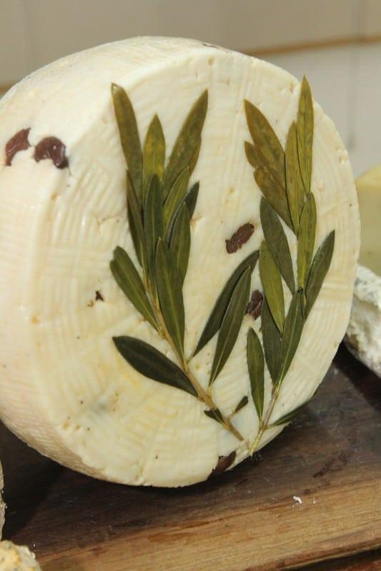 גבינת גל, מחלבת מרקוביץ'-מושב נחלים (צילום הילה פישר מרקוביץ')