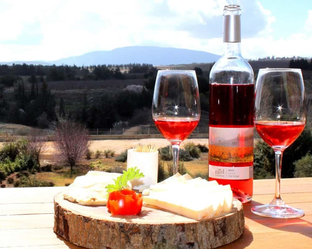 גבינות ויין בגליל (צילום תקשורות-יעל שביט)