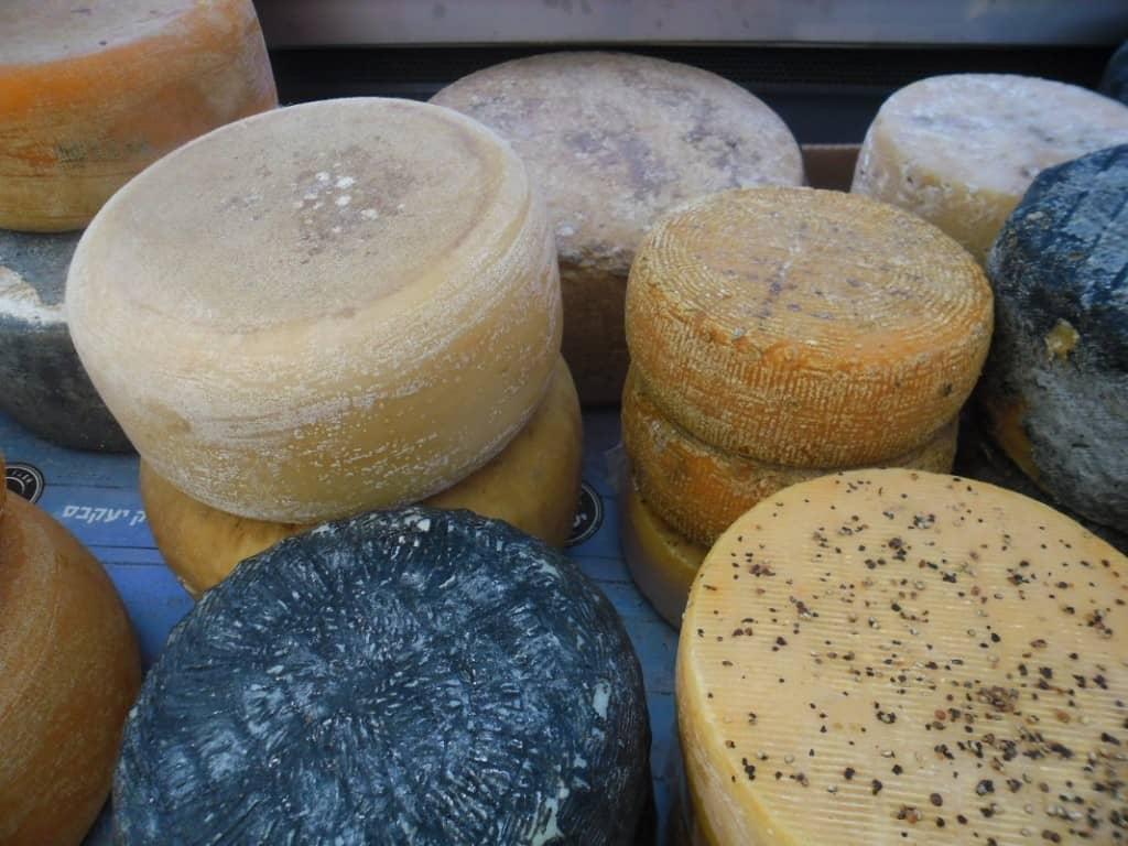 מגוון גבינות קשות (צילום דני בר)