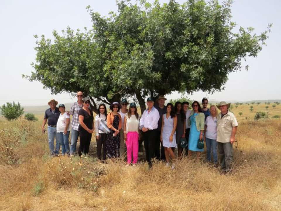 """משלחת השגרירים ביער חגית (צילום יח""""צ קק""""ל)"""