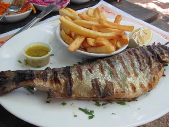 הפורל של דגי דפנה (צילום מאיה פליישמן)