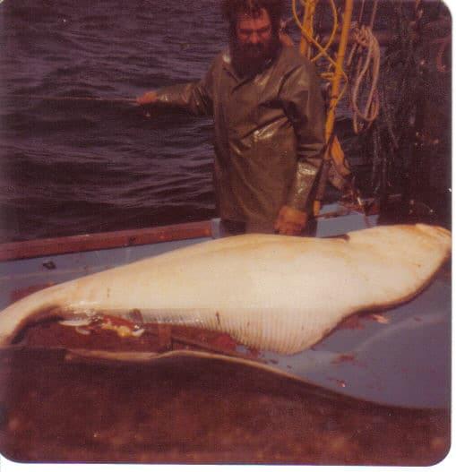 אני ודג הליבוט ענק שדגתי באלסקה 1981 (צילום דני בר)