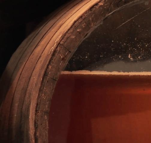 """שכבת השמרים מעל היין המתיישן (צילום יח""""צ חו""""ל)"""