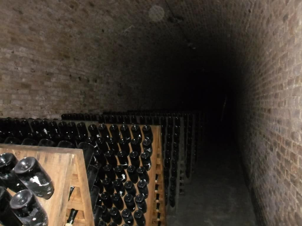 שמפניה שוכבת בשיטה המסורתית במרתפי בולינג'ר (צילום דני בר)