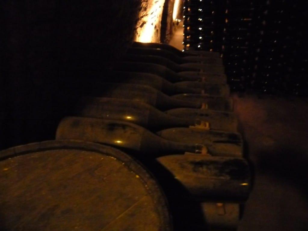 בקבוקי שמפניה של דרפיה, מתיישנים במרתף (צילום דני בר)