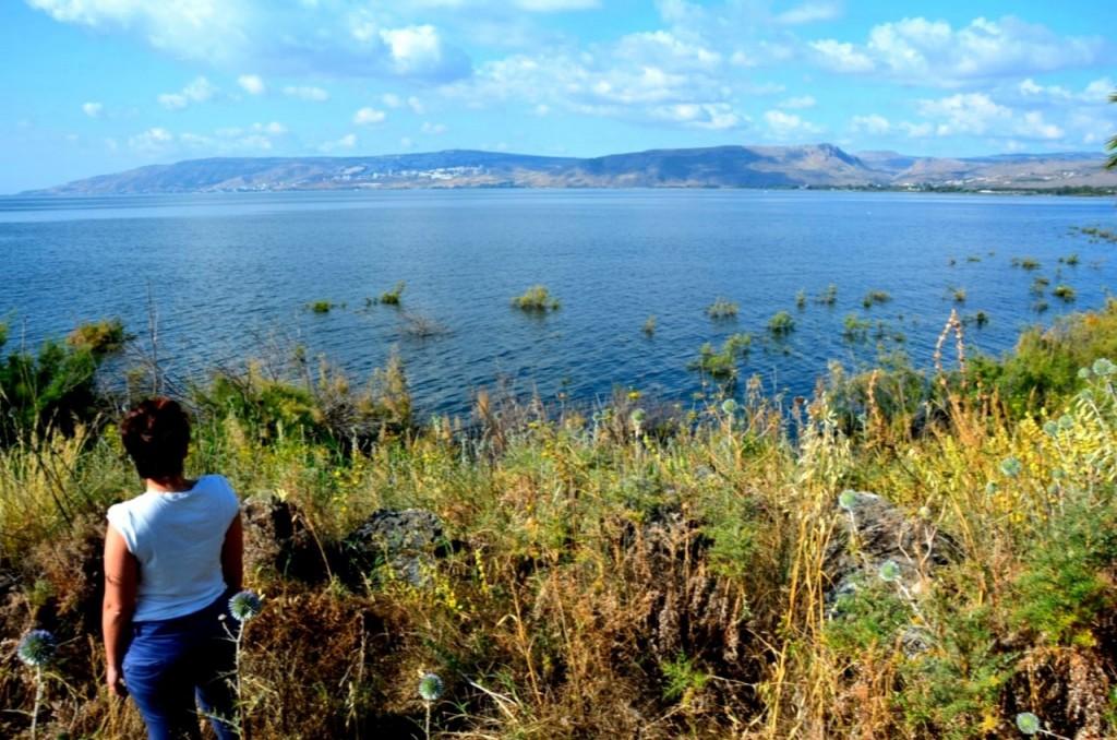 """גשר אריק לכפר נחום תצפית משביל סובב כינרת (צילום יח""""צ)"""