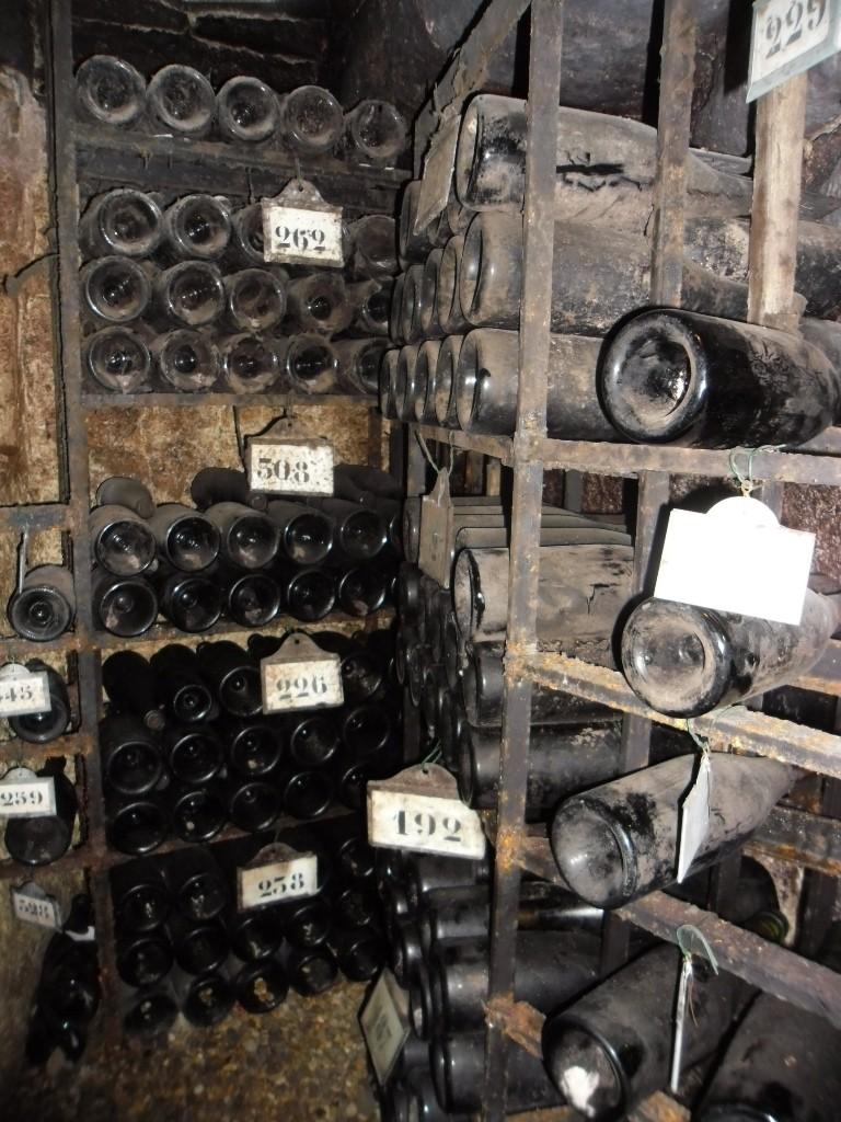 מרתף יינות עם בקבוקים בני 20 שנה עד 200 שנה (צילום דני בר)