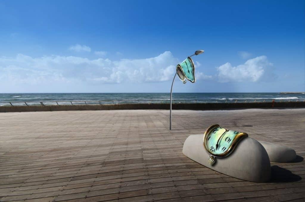 """דאלי בנמל (צילום יח""""צ)"""