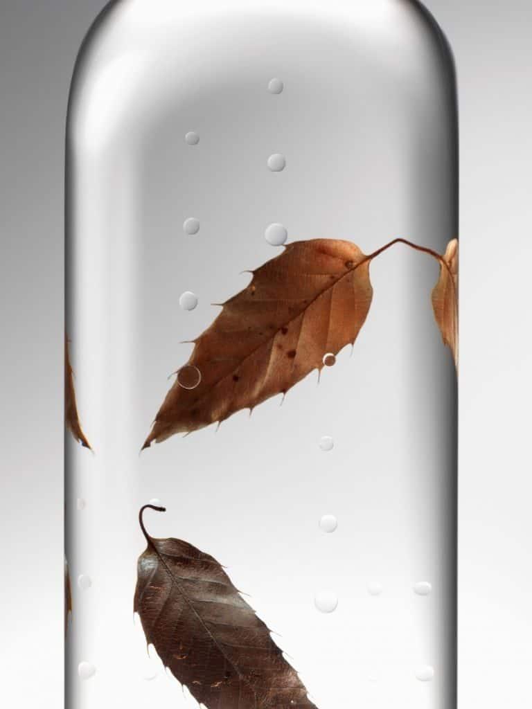 בקבוק גשם (צילום הדמיה הירושי איווסקי)