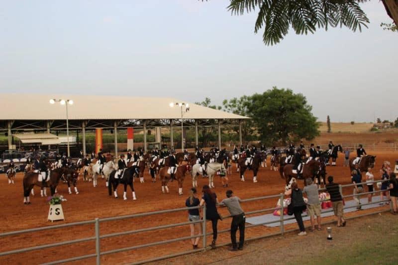 יום הסוס (צילום עדי כספי)