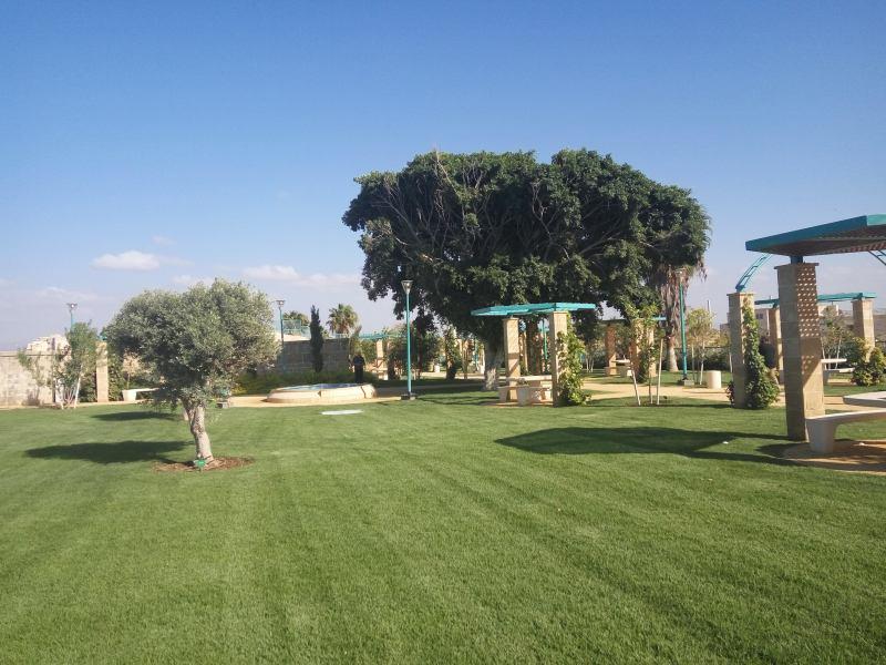 גן הבוסתן בעכו העתיקה (צילום דני בר)