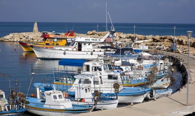 נמל דייגים טיפוסי בקפריסין (צילום: F. Silvestris)